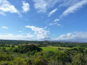 Landscape surrounding the Ankarana National Park.