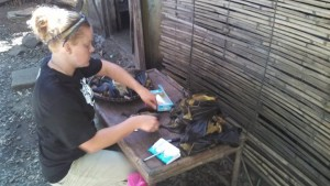 Haley collecting hair samples from bushmeat in northern Madagascar.