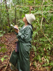 Sylviane collecting data in Madagascar.