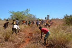 Constructing a fire break with the help of local communities.