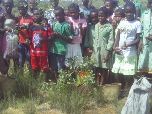 Reforestation outreach in rural Malagasy communities.