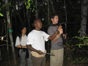 Radiotelemetric localization of lemurs at night, Ankarafantsika National Park (photo: E. Zimmermann)