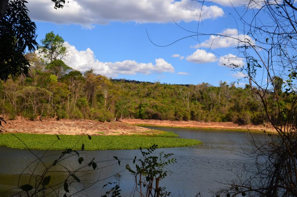 Lac Ravelobe in Ankarafantsika National Park. Photo by Lynne Venart.
