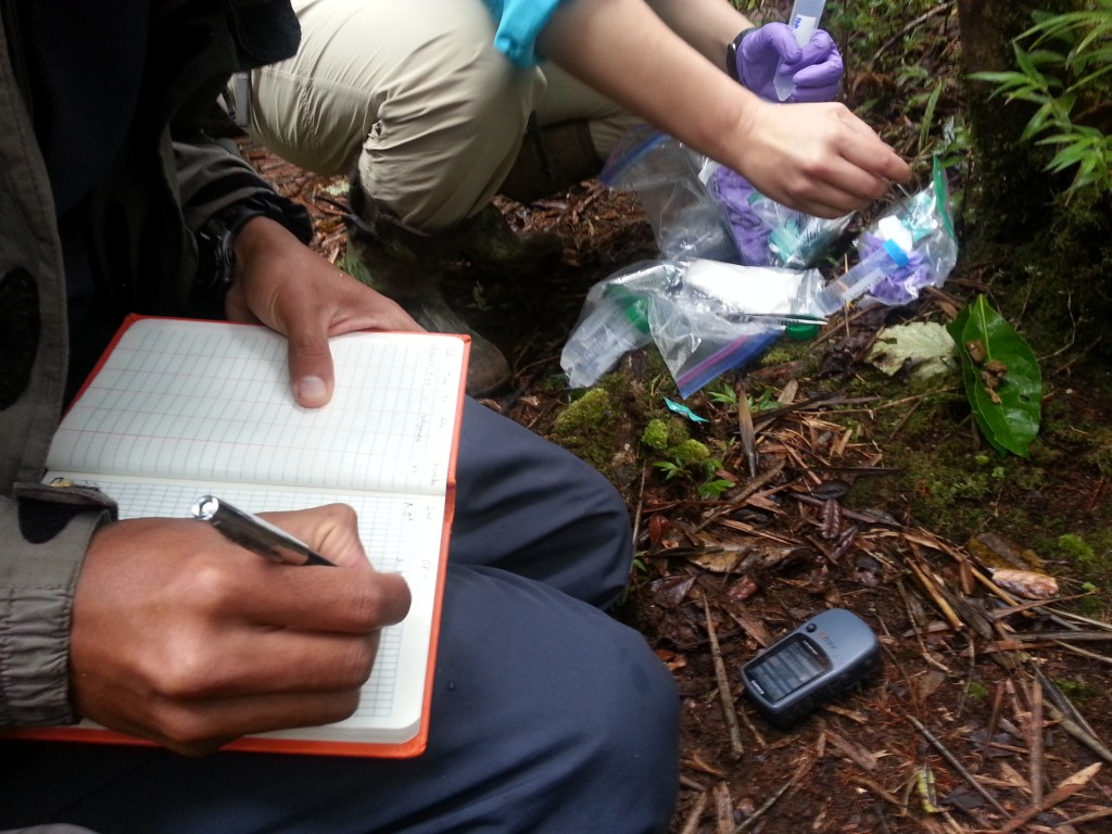 Noting GPS Coordinates of the Sifaka Groups. Photo by Sabrina Szeto.