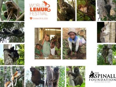 TAF Mada 2015 World Lemur Festival