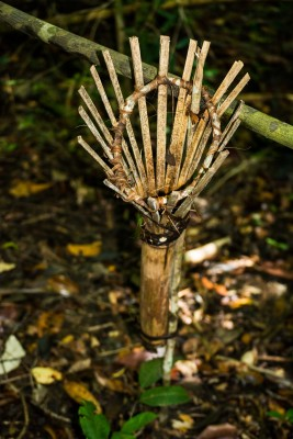 A lemur trap (used to hunt lemurs) in a protected area.