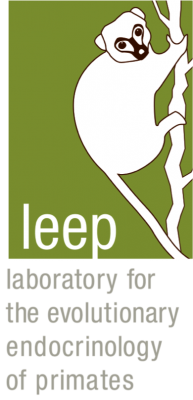 LEEP Logo Web transparent