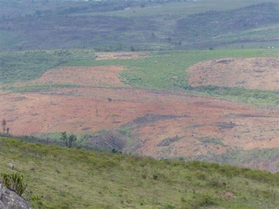 Eroded soil, another effect of clearing forests for land cultivation. Photo by Nirina Rakotoharisoa
