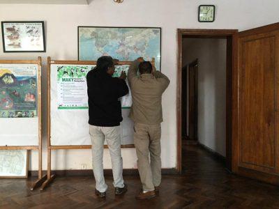 pet lemur outreach madagascar