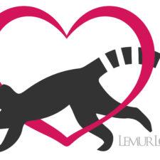 LCN Member of the Month: Lemur Love