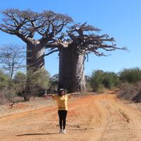 Ny tsiambaratelon'ireo Baobab na Renala