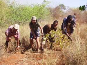 Sylviane working with a team to create a fire break in rural Madagascar.