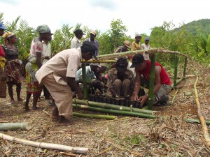 Reforestation project.