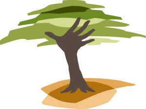 Eden Reforestation Projects logo.