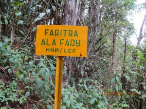 Demarcation signs funded by LCF to outline the boundary of the Anjanaharibe-Sud Special Reserve.