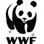 WWF The Panda logo