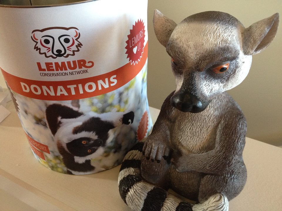 Donation can from the Lemur Conservation Network launch party.