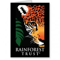 rainforest_trust_notecard_stationery_note_card-rda3799c4a5284e2892cc9dfea90e42be_xvuai_8byvr_512