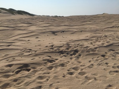 Ash Dykes and his guide Mi trekked 120 miles of sand dunes to reach Fort Dauphin. Photo by Ash Dykes.