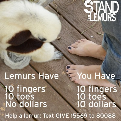 Duke Lemur Center's #StandForLemurs campaign. Photo courtesy of Duke Lemur Center.