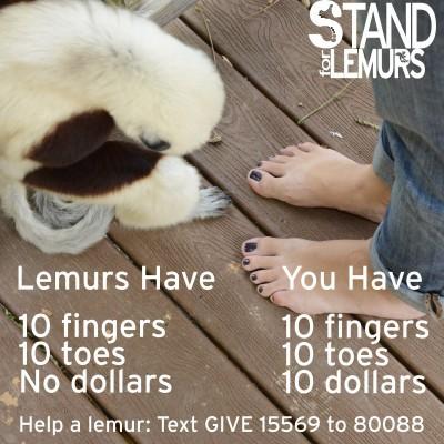 Duke Lemur Center's #StandForLemurs campaign. Photo courtesy of Duke Lemur Center.