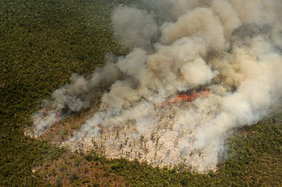 An overhead view of a slash-and-burn fire raging across Madagascar's forests.