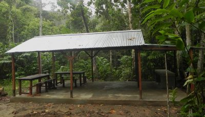 The newly built dining area at Camp Indri in Anjanaharibe-Sud Special Reserve thanks to Lemur Conservation Foundation! All-black Indri are found very near this camp here as well as silky sifakas.